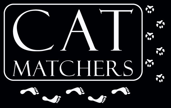 cat matchers.jpg