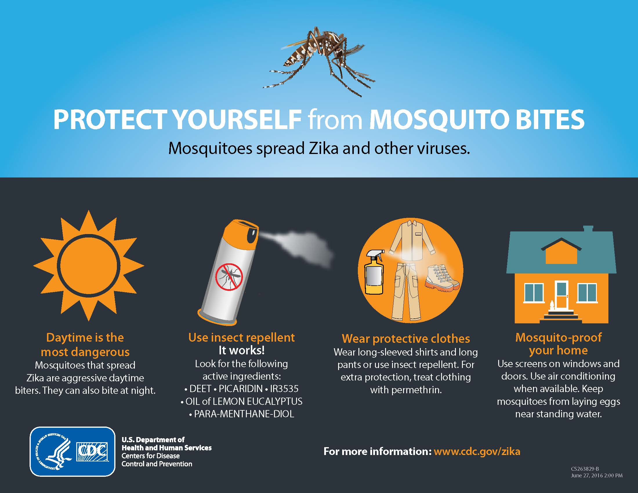 zika_protect_yourself_from_mosquito_bites.jpg