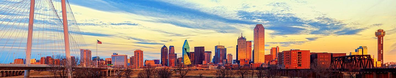 Dallas 311 Home